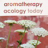 Aromatherapy Acology Today
