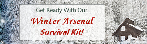winter arsenal survival kit