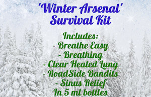 'Winter Arsenal' Survival Kit